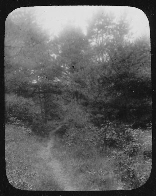 The Old Bay Path, ca. 1900