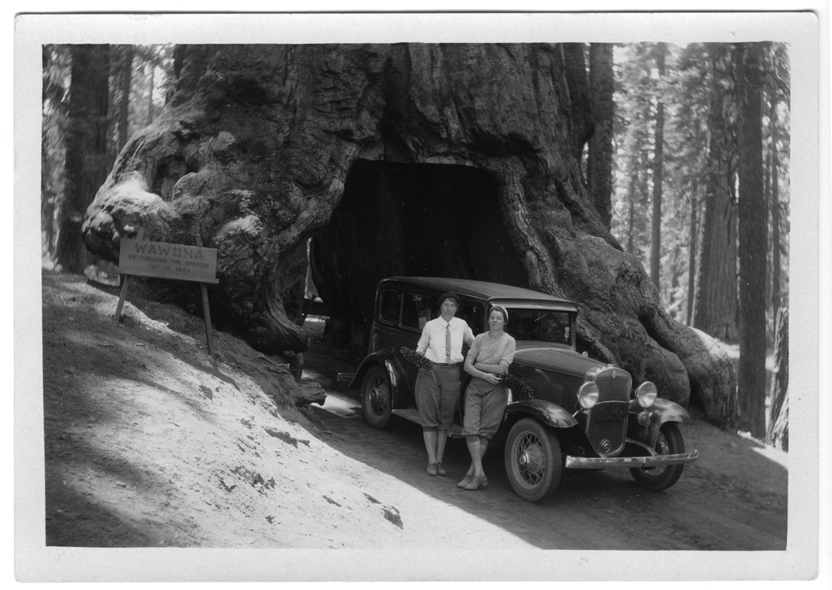 Margaret Holmes and friend at the Tunnel Tree, no date