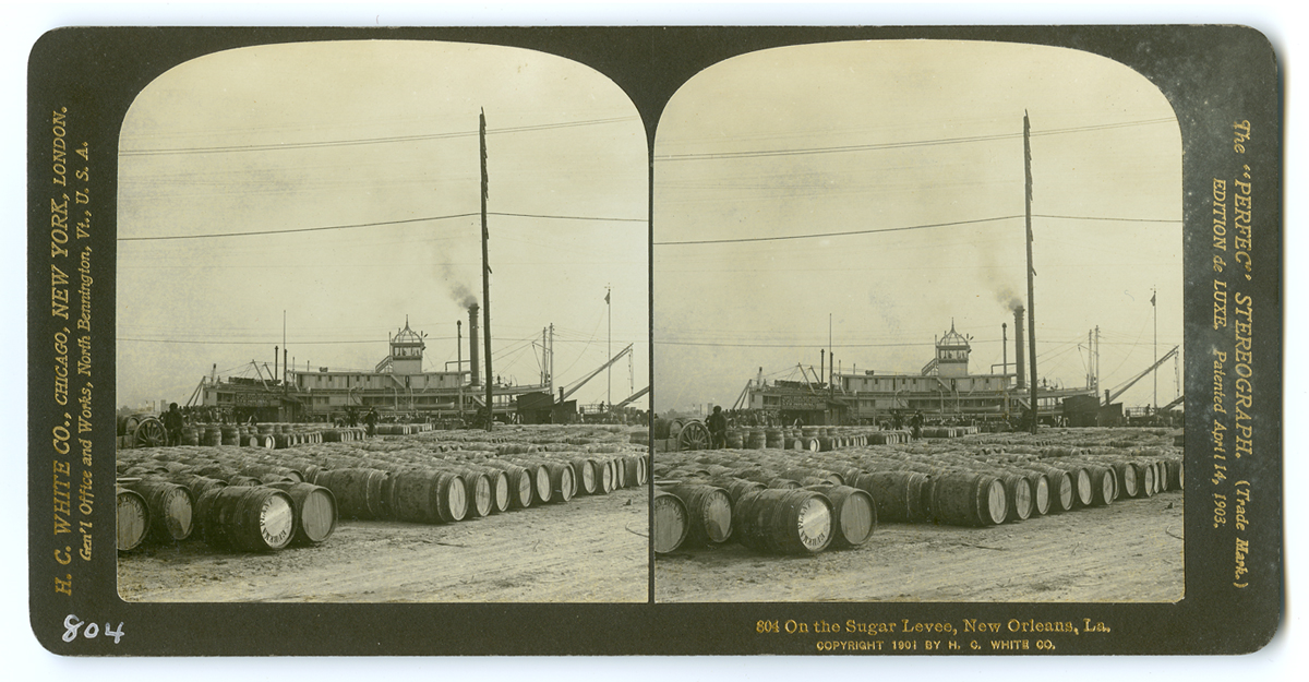 804 On the Sugar Levee, New Orleans, La., 1901