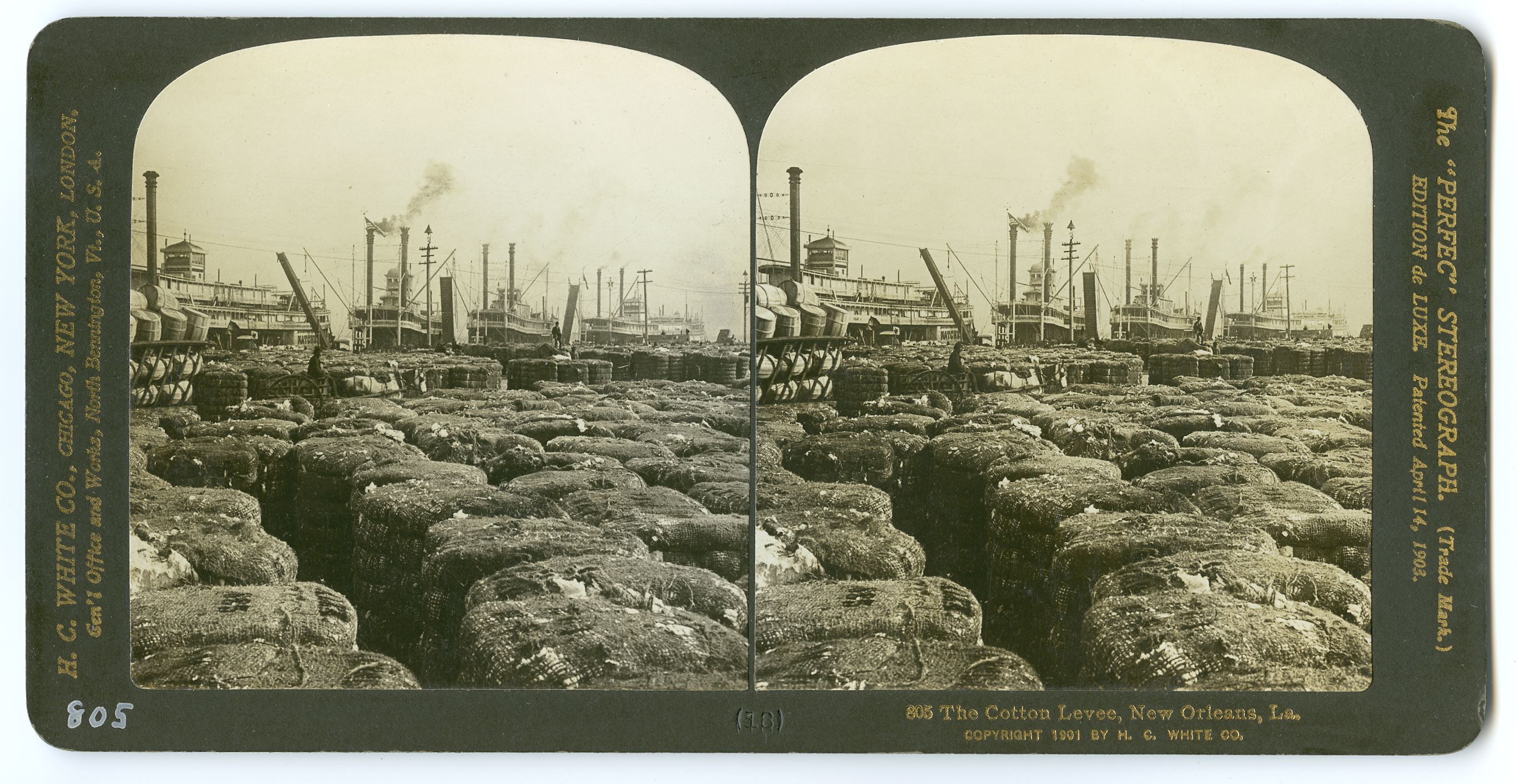 805 The Cotton Levee, New Orleans, LA., 1901