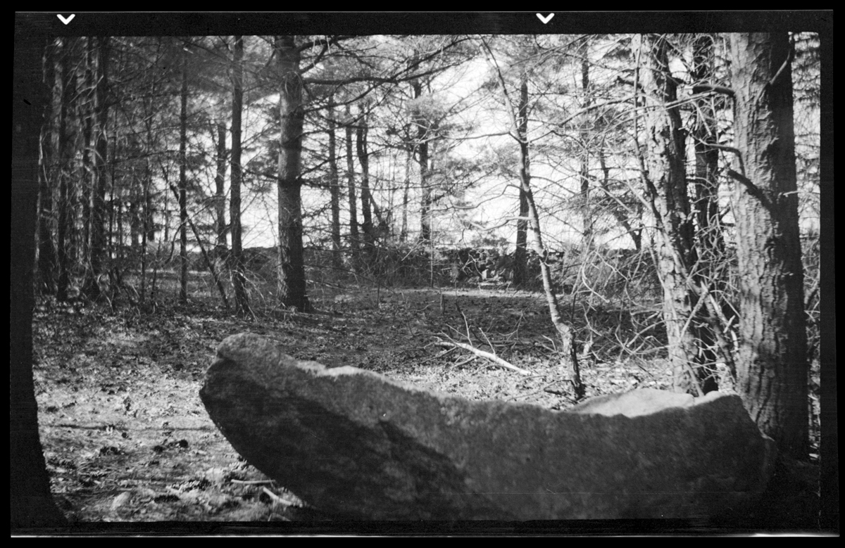 Rock formation in the woods, circa 1925