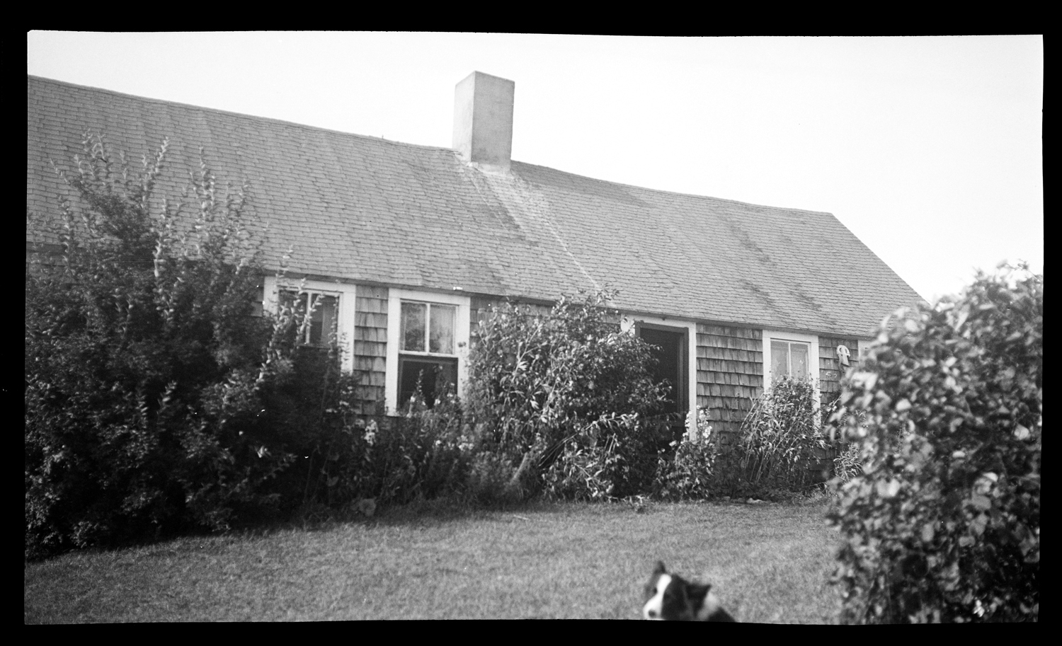 Lucas House, 159 Pembroke Street, August 1935