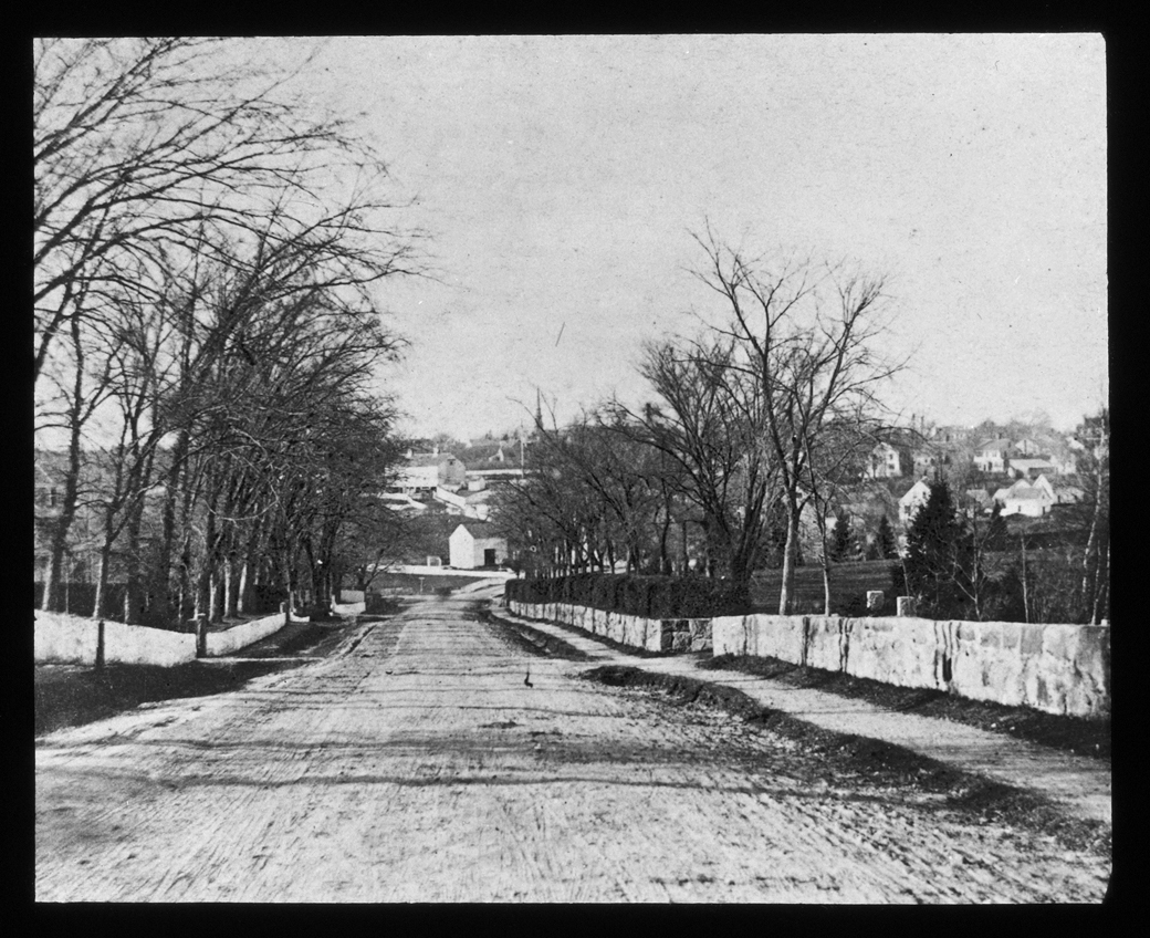 Main Street, looking north down Thomas' Hill, 1876